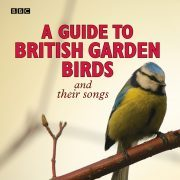 Lydbok - A Guide To British Garden Birds-Stephen Moss
