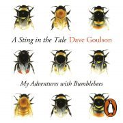 Lydbok - A Sting in the Tale-Dave Goulson