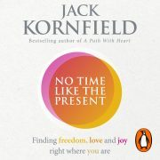 Lydbok - No Time Like the Present-Jack Kornfield