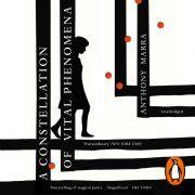 Lydbok - A Constellation of Vital Phenomena-Anthony Marra