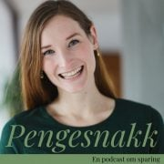 Lydbok - Pengesnakk #31 Staycation-Lise Vermelid Kristoffersen